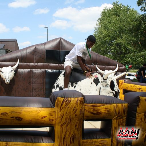 Mechanical Bull Record A Hit 01